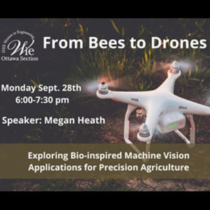 Online Talk: From bees to Drones: Exploring bio-inspired machine vision applications for precision agriculture